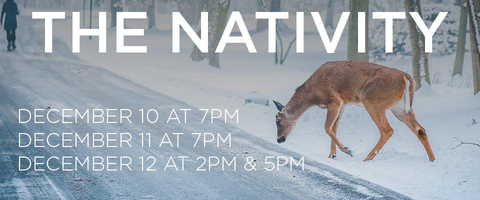 Nativity-2015-Web
